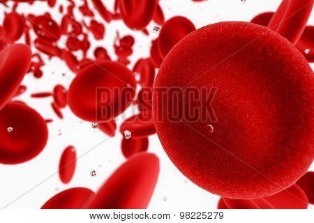 blood cells illustration