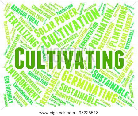 Cultivating Word Means Cultivate Text And Cultivates