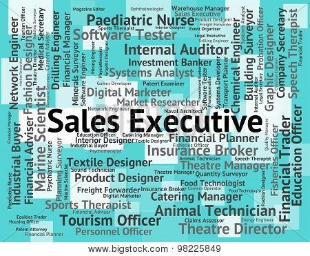 Sales Executive Means Director General And Md