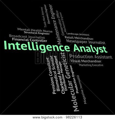 Intelligence Analyst Shows Intellectual Capacity And Ability