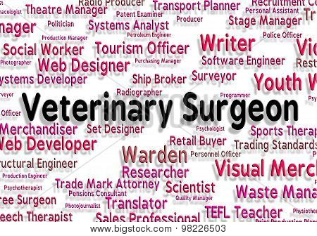 Veterinary Surgeon Indicates General Practitioner And Career