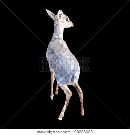 polygon illustration of dik dik antelope