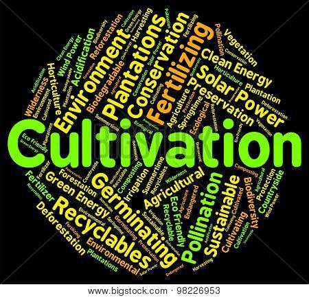 Cultivation Word Shows Growth Farm And Text