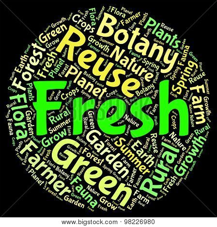 Fresh Word Indicates Words Fresher And Text