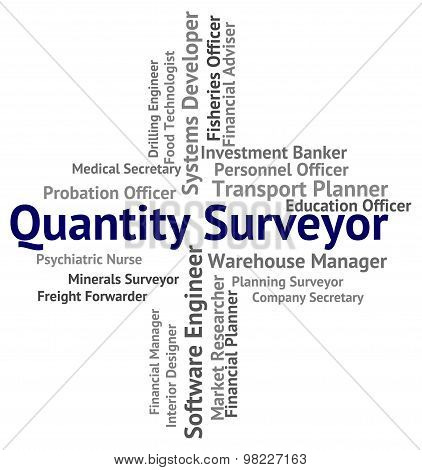 Quantity Surveyor Shows Measurer Surveyors And Text