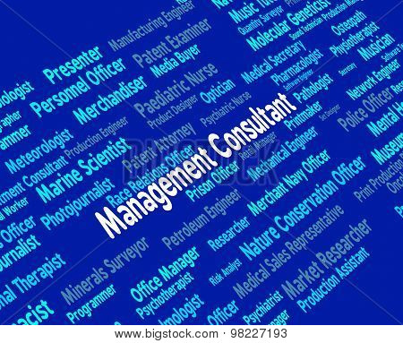Management Consultant Means Occupations Adviser And Job