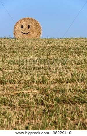 Straw bale smile.