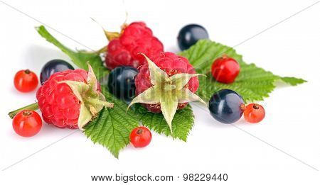 Heap of fresh berries with green leave isolated on white