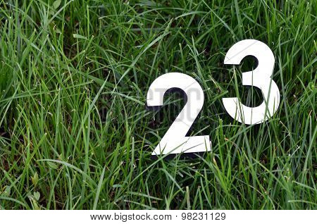 Numbers On A Grass