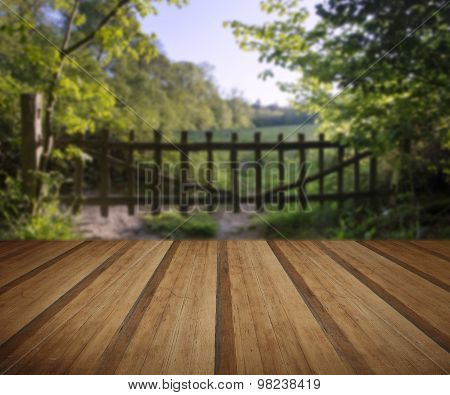 Lovely Old Gate Into Countryside Field Summer Landscape With Wooden Planks Floor