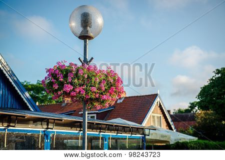 Street Lamp Decorated With Pink Flowers. Nida, Lithuania