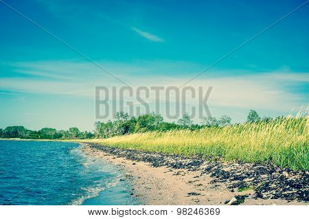 Beach With Green Fields And Blue Sky