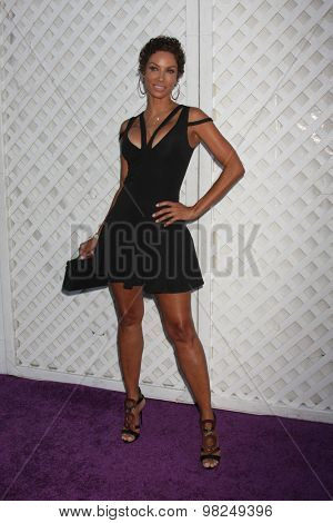 LOS ANGELES - AUG 8:  Nicole Murphy at the 17th Annual HollyRod Designcare Gala at the The Lot on August 8, 2015 in West Hollywood, CA