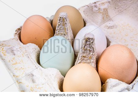 Six Eggs In Different Colors And Sizes In An Egg Carton