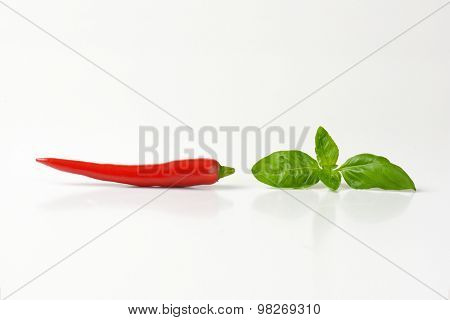 chili pepper and basil leaf on white background