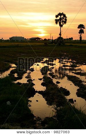 The Evening Before Sunset Rural Thailand
