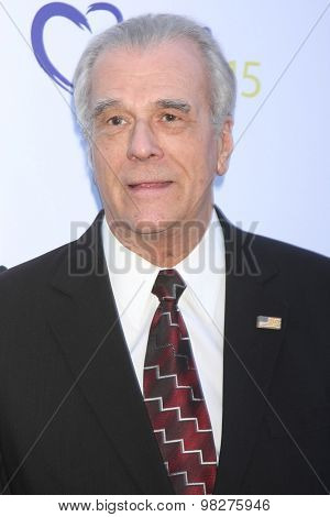 LOS ANGELES - AUG 8:  Tom Hallick at the 17th Annual HollyRod Designcare Gala at the The Lot on August 8, 2015 in West Hollywood, CA