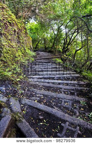 A four-mile wet, muddy trail with cinder block steps down a tropical Hawaiian mountain on Molokai leads to a small town of only a handful of residents and is the only access other than by sea.