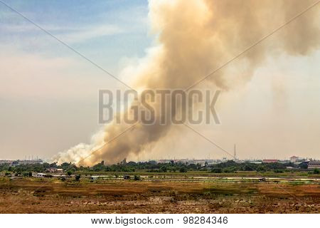 Burning Field.