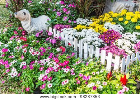 Beautiful flower garden.