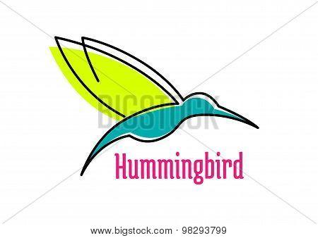 Little hummingbird bird abstract icon