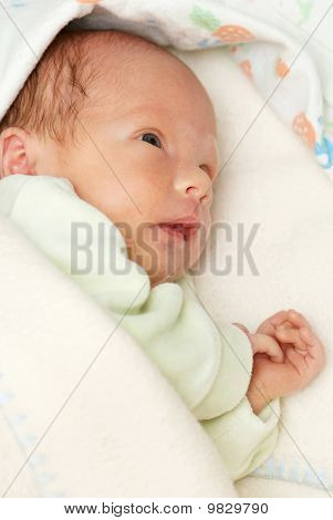 Portrait Of A Newborn Baby