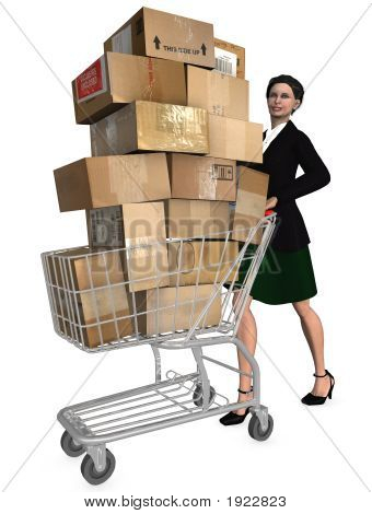 Shopper Shopping Cart Shipping Cartons
