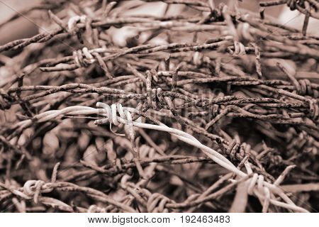 Abstract of old the barbed wire, brown tone image
