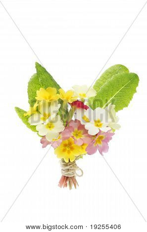 Posy Of Spring Flowers