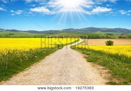 Beautiful Image of the Farmlands