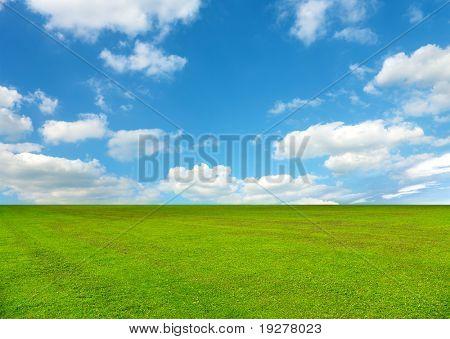 campo de Primavera, coberto por uma grama