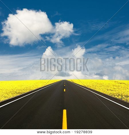 Summer road