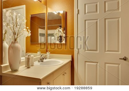 Bathroom with white door and orange accent paint