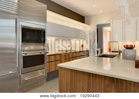 Luxury Kitchen with stainless steel appliances and wood cabinetry