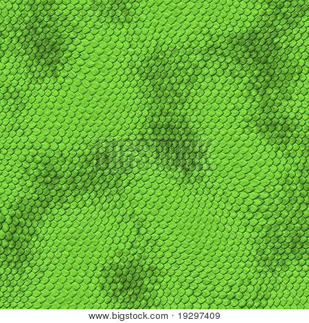 a very large illustration of scaley and bumpy green snake skin