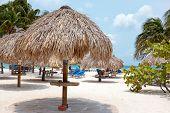 Beach umbrella and beach chairs on Palm Beach at Aruba island in the Caribbean Sea poster