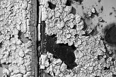 The Old Worn Metal Surface In The Paint. Black And White Photo. Rusty Metal Texture. Metal Sheet Wit poster