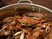picture of cooked blue crab  - cooked blue crabs from the Chesapeake Bay of Maryland - JPG
