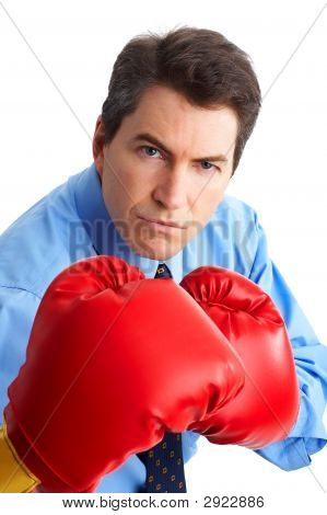 Businessman Boxer