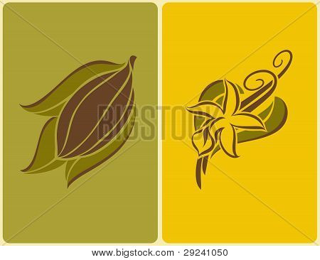 Cocoa Bean And Vanilla Pods. Vector Illustration.
