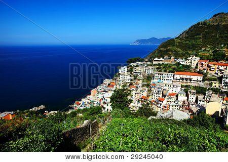 Wine in Riomaggiore Village, Cinque Terre, Italy