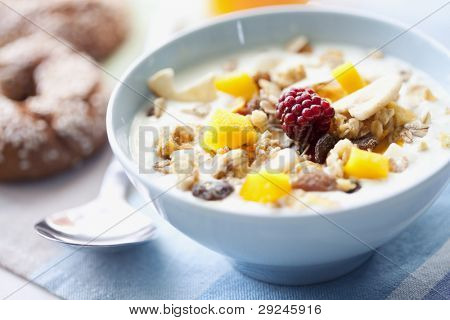 bowl of cerial with yogurt or milk