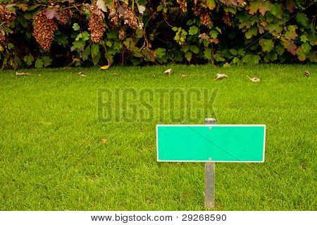Green Grass With A Sign And A Bush, Horizontal Shot