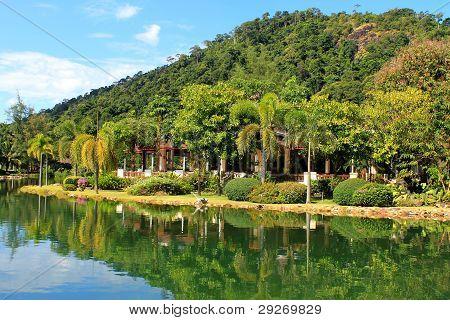 tropical nature near lake