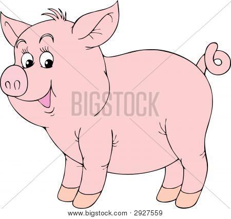 Pink Piglet