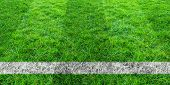 Soccer Line In Green Grass Of Soccer Field. Green Lawn Field Pattern For Background. poster