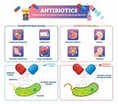 Antibiotics Vector Illustration. Labeled Health Care Medication Treatment Scheme. Drugs Therapy To H poster