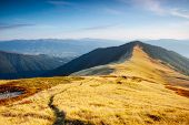 Majestic panorama of mountains in sunny day. Location place Carpathian mountain, Ukraine, Europe. Sc poster