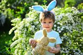 Rabbit Kid With Bunny Ears. Hare Toy. Little Boy Child In Green Forest. Egg Hunt On Spring Holiday.  poster