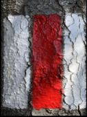 Red And White Sign Painted On Rock Marking Hiking Trail Or The Swiss Mountain Trail Marking - Switze poster